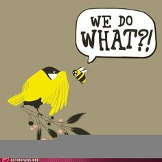 I really like the Birds and the Bees theme idea! its so cute and its how babies are made lol
