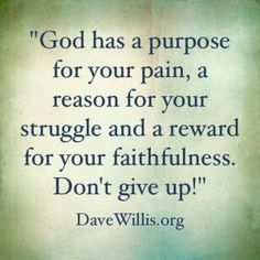 God has a purpose for your pain, a reason for your struggle and a reward for your faithfulness. Don't give up. -Dave Willis