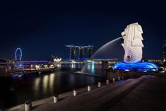Foodies, nature lovers, art buffs and sports fans: Singapore has exciting new adventures and experiences for you.