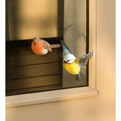 Window magnets, perfect!