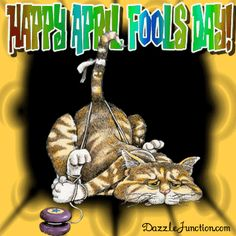 April Fools Day April Fools Cat picture April Fools Day Image, Photos For Facebook, Tied Up, The Fool, Cats, Pictures, Scrap, Places, Happy