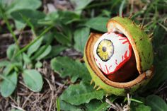 Oko potwora z kasztana w osłonce <3 By Elżbieta Olszewska