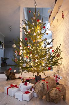 Finnish Christmas tree. Love the pigs!