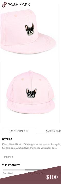 755091282a0d4 Woman's Best Friend Hat in Pink So darling, in perfect condition. No trades  please x Hat is also available in blue Boutique Accessories Hats