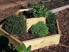Herb Planter - What a neat idea!
