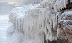 Image result for icicles on trees