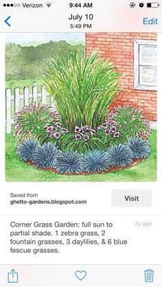 Corner Grass Garden - three different tiers for front slope 1 Zebra Grass 2 Fountain Grass 3 Daylilies 6 Blue Fescue Grass Garden Yard Ideas, Flower Garden, Plants, Garden, Grasses Garden, Ornamental Grasses, Low Maintenance Garden, Outdoor Gardens, Landscape