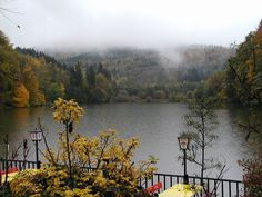 Thalersee Lake in Autumn,Thal,   Austrai //Arnold Alois Schwarzenegger's birthplace // Thalersee im Herbst by DerGraueWolf