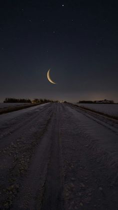 Moon Love ~ AncientAllies (.blog)