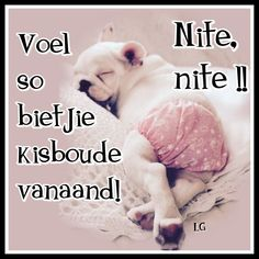 Cold Weather Quotes, Goeie Nag, Afrikaans Quotes, Sleep Tight, Mother Quotes, Cute Quotes, Good Night, Teddy Bear, Inspirational Quotes