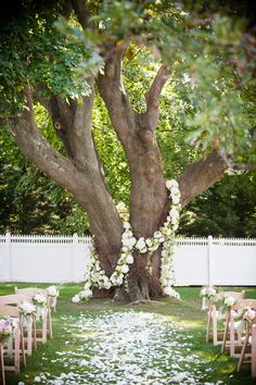 Ceremony tree wrapped in flowers.