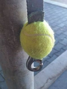 awesome use  for trailer ties from rattling as you drive down the road.  Just slide the ball down to use clip on the halter.: