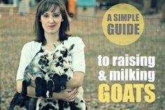 Goat info