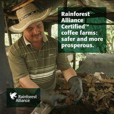 Rainforest Alliance (@RnfrstAll_UK) | Twitter