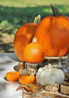 Pumpkins and Communi