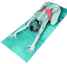 So what kind of muscles do you stretch when you do yoga? Look at these stretching exercises with pictures do find out - Vicky Tomin is a Yoga exercise Golf Exercises, Stretching Exercises, Senior Fitness, Yoga Fitness, Crossfit Body, Muscle Stretches, Diy Beauty Makeup, Qigong, Yoga Benefits