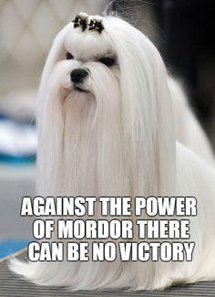 Saruman.