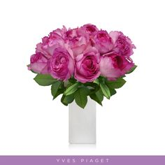 "Hot Pink Garden Roses Yves Piaget is magnificent aromatic and will bring that touch and scented to romance to any bouquet and setting! Often referred to as ""the romantic wedding rose"", its nostalgic shape will create a striking statement and it looks like peonies! Features: ✿ 40cm-50cm Stem length Single bloom ✿ Approx. bloom size: 5 cm / 2 in ✿ Gift Messaging ✿ Free Shipping ✿ All varieties have different shapes (please, see the picture of the open process for the best selection). Hot Pink Flowers, Fresh Flowers, Pink Garden, Garden Roses, Fragrant Roses, Wholesale Roses, English Roses, Rose Wedding, Different Shapes"