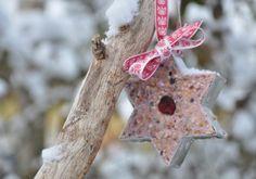 Schöne Idee: Vogelfutter Sterne zum Selbermachen. Noch mehr Ideen gibt es auf www.Spaaz.de