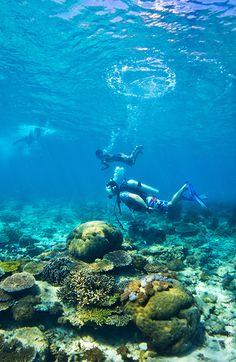 Timor Leste Ministry Of Tourism