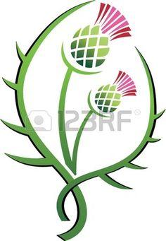 Thistle illustration floral emblem of Scotland Stock Vector