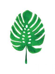 Botânica