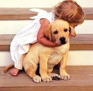 Dog and angel