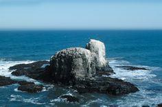 Punta de Lobos, Pichilemu, VI Región, Chile