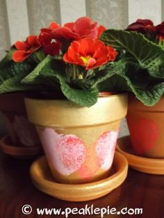 Painted plant pot for a present