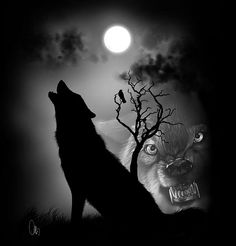wolf shadows  wolf digital art painting  silhouette art