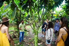 Viaggio in Costa Rica con Piz Buin: Pura Vida!