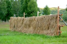 folk-hay. Just like my grandparents used to do it :)