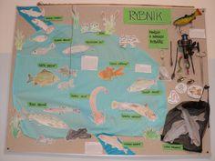 Rybník - červen 2016 Classroom, Map, Education, Water, Gripe Water, Maps, Educational Illustrations, Learning, Peta