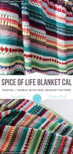 Crochet Afghans Spice of Life Blanket CAL Free Crochet Pattern - The year is coming to an end, so it's time to plan some bigger projects for a new year. Spice of Life Blanket CAL looks amazing. It features a bunch of Crochet Puff Flower, Crochet Flower Patterns, Crochet Flowers, Crochet Blanket Flower, Crochet Afghans, Crochet Blankets, Baby Blankets, Unique Crochet, Free Crochet