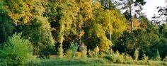 Le Parc du Vaulx St Georges à Thésée | Val de Cher #beauval #jardins #touraine  #loire #destinationbeauval