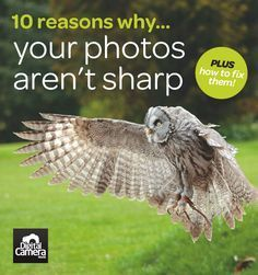 If your images aren't as sharp as you'd like, then read this