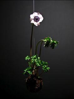 more kokedama Hanging Plants, Indoor Plants, Bonsai, String Garden, Zen Style, Plant Art, Exotic Plants, Ikebana, Japanese Art