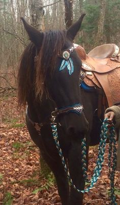 Complete set feathers headstall or side pull, Breast Collar and reins horse western dream catcher medieval custom made Horse Bridle, Western Horse Tack, Western Riding, Horse Gear, Horse Saddles, Western Saddle Pads, Western Saddles, Horse Tips, Cute Horses
