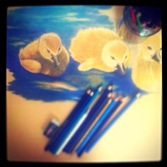 Colored pencils  Created by Alaa W. Deiry (Me).