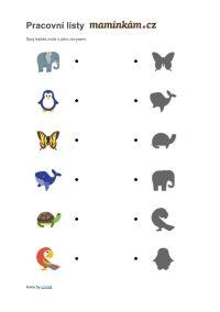 Pracovní listy - zrakové vnímání - Spoj každé zvíře s jeho obrysem Montessori, Creative