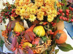 Őszi virág és termések dekor
