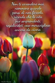 Good Morning Good Night, Day For Night, Good Day, Italian Life, Messages, Love Quotes, Positivity, Barbarella, Slogan