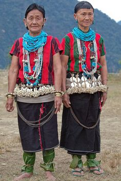 adi pailebo tribe, arunachal pradesh