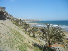 playa del ingles, gran canaria Canario, Travel Pictures, Passport, Beaches, Stamps, Mountains, Nice, Water, Outdoor