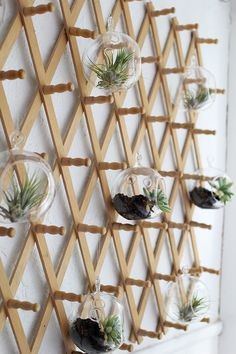 Vertical gardens 56787645291316482 - This coatrack hanging garden is indoor gardening innovation at its finest. Gather a collection of terrariums and air plants and hang them from the pegs on your wall-mounted coatrack. Jardin Vertical Diy, Vertical Garden Design, Vertical Gardens, Hanging Pots, Diy Hanging, Hanging Gardens, Garden Projects, Garden Ideas, Herb Garden