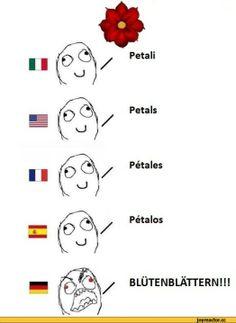 Differenze linguistische