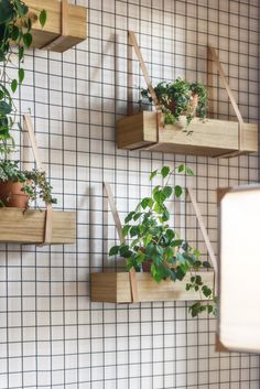 DIY Inspiration - Wood crates on the Wall with straps for herbs in the Kitchen diy garden design Główna Osobowa Bar and Restaurant in Gdyna, Poland by PB/STUDIO and Filip Kozarsk