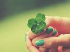 It's possible that people who've never found a four-leaf clover think they don't exist. The fact is, finding four-leaf clovers or clovers with more than four leaves is a rare occurrence.