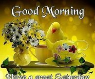 Good Morning Happy Saturday Gods Blessing