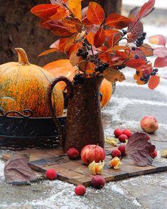 Always Autumn (bookofoctober: Photo by alenadanko) Fall Pictures, Fall Photos, Mermaid Wallpaper Backgrounds, Autumn Scenes, Season Of The Witch, Autumn Cozy, Photo Tree, Hello Autumn, Fall Harvest